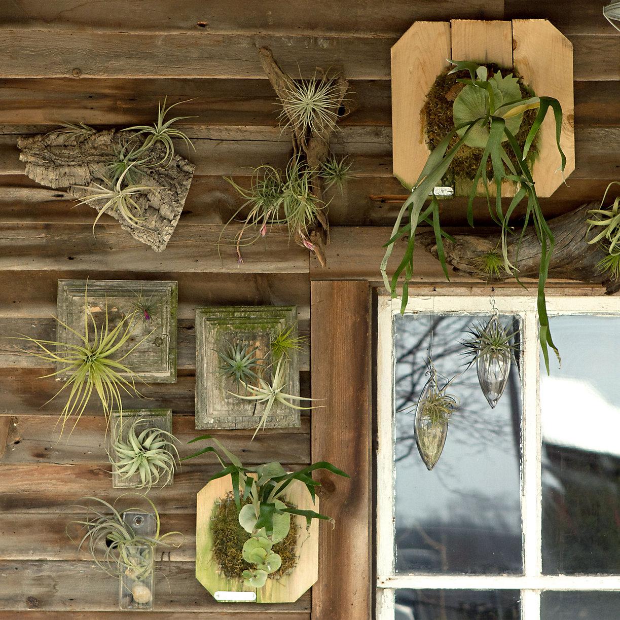 Terrain Home Decor: The Partially Practical Purveyor